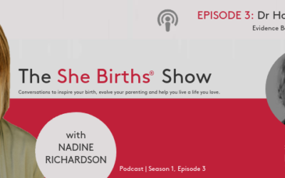 Podcast| Ep 3, Dr Howard Chilton chats Evidence Based Natural Parenting